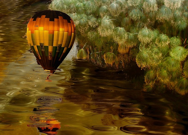 Balloon water vegetation, nature landscapes.