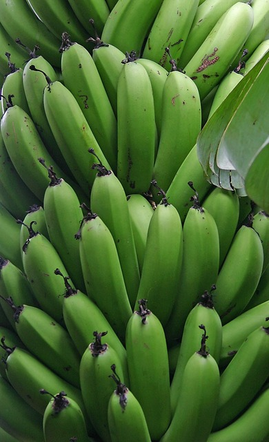 Banana fruit unripe, food drink.