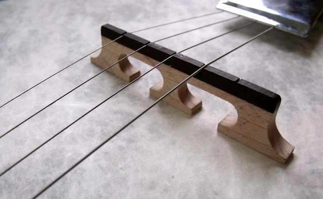 Banjo instrument music, music.