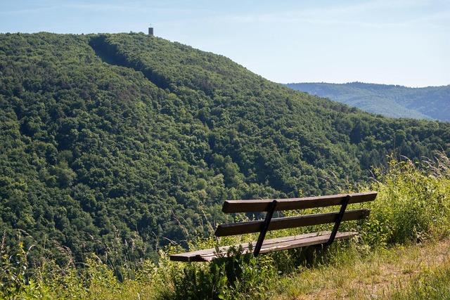 Bank castle viewpoint, nature landscapes.