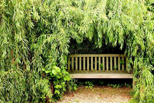 Bank rest garden bench.