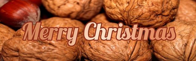 Banner header christmas.