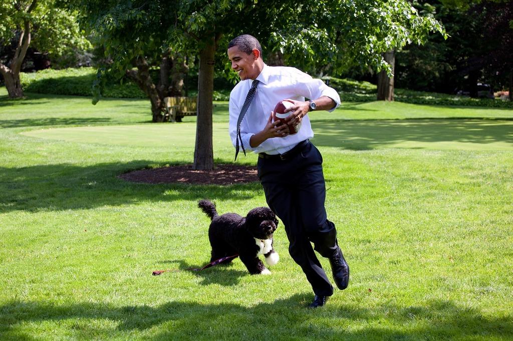 Barack obama and bo 2009 play, emotions.