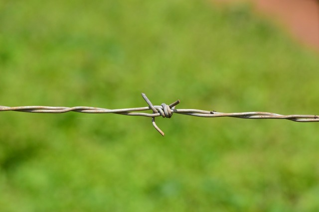 Barb wire barbed.