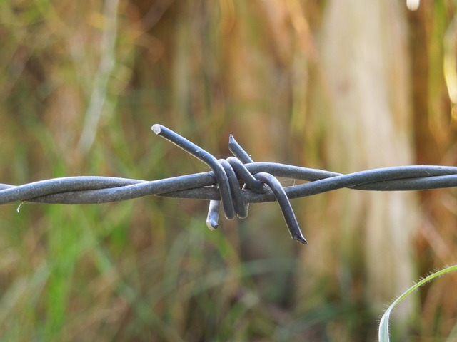 Barbed wire close up macro.