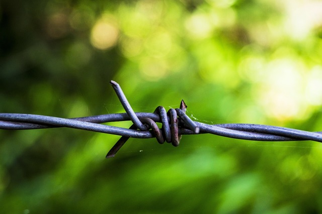 Barbed wire fence wire.