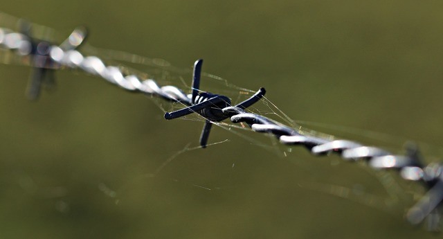 Barbed wire fencing caution.