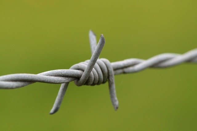 Barbed wire pointed wire.