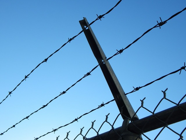 Barbed wire prison chain link.