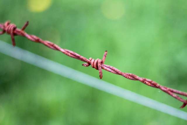 Barbed wire stainless fence.