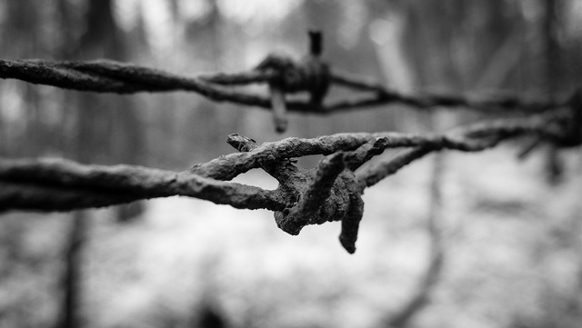 Barbed wire wire fence.