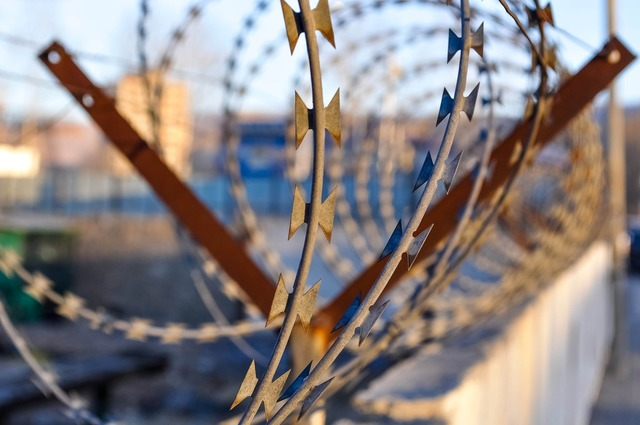 Barbwire barbed wire security.