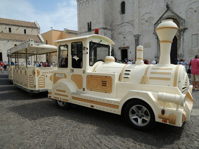Bari italy train.