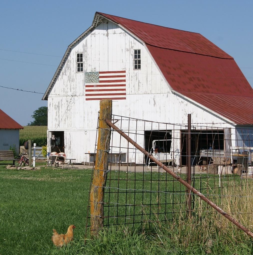 Barn farm rural, architecture buildings.