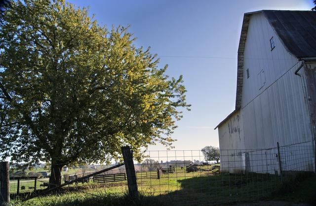 Barn rural farm, architecture buildings.