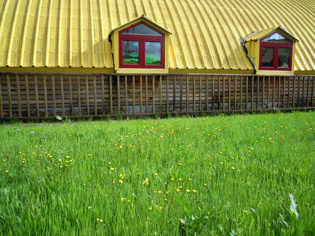 Barn shack shed.