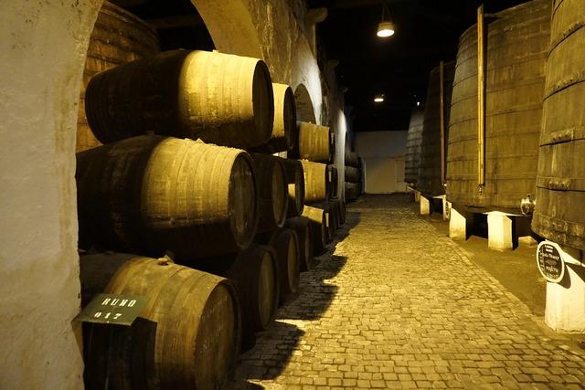 Barrel basement wine.