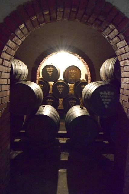 Barrels wine vineyard.