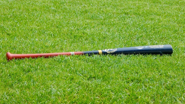 Baseball baseball bat sport, sports.