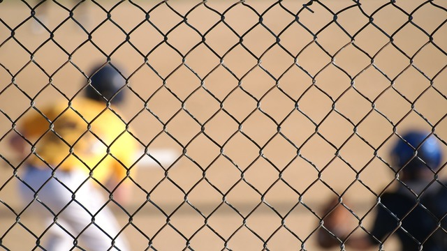 Baseball batter up sport, sports.