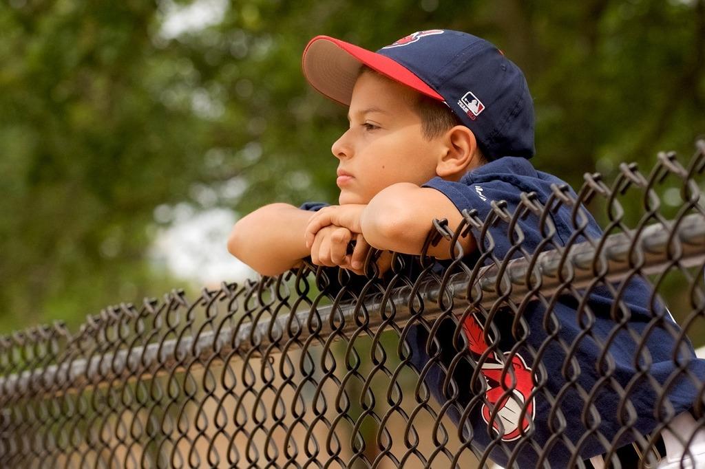 Baseball fence cleveland, sports.