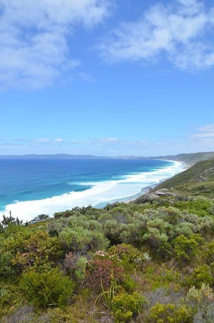 Beach australia sea, travel vacation.