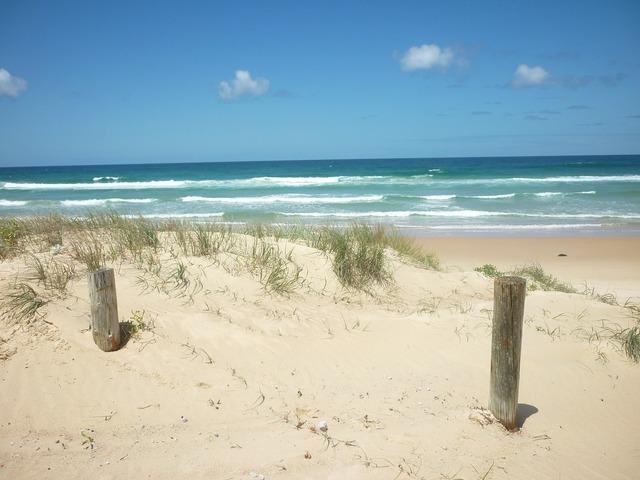 Beach australia surf, travel vacation.