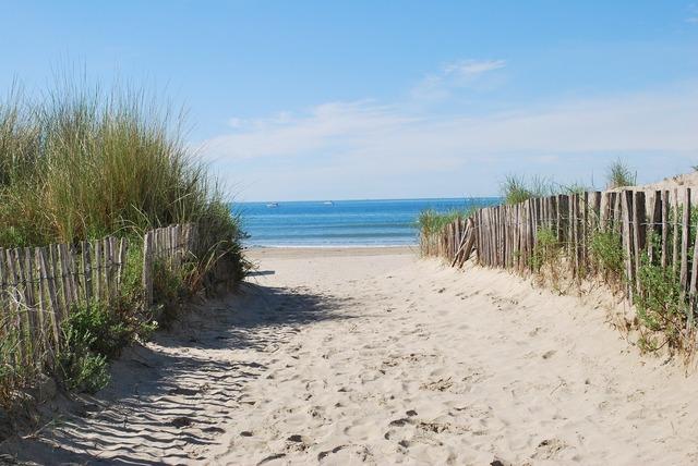Beach beach path sea, travel vacation.