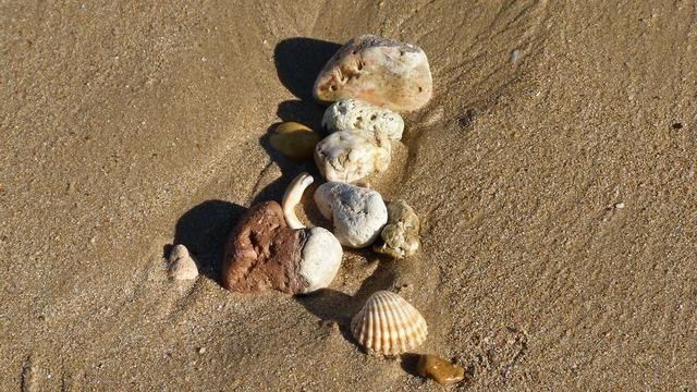 Beach beach sand shell, travel vacation.