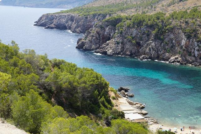 Beach booked ibiza, travel vacation.