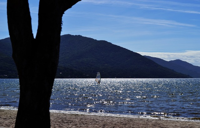 Beach brazil silhouette, travel vacation.