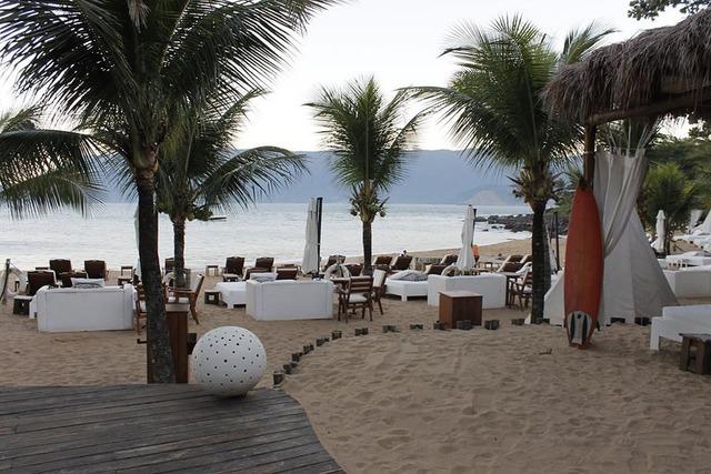 Beach coconut trees mar, travel vacation.