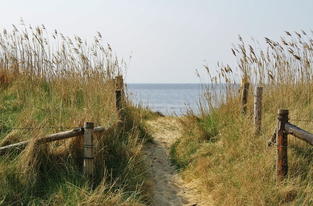 Beach cuxhaven sand road, travel vacation.