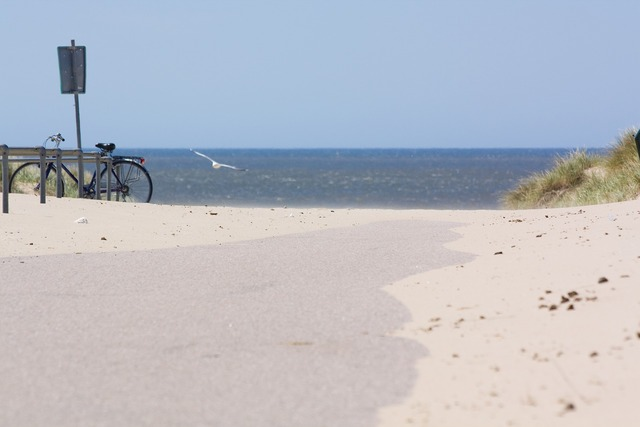 Beach dune north sea, travel vacation.