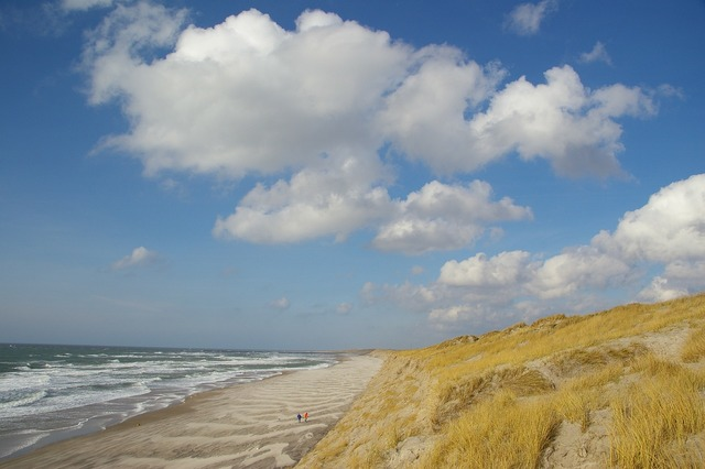 Beach dunes denmark, travel vacation.