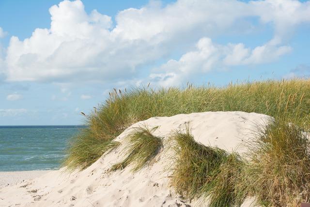 Beach dunes sylt, travel vacation.