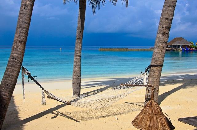 Beach hammock tropical, travel vacation.