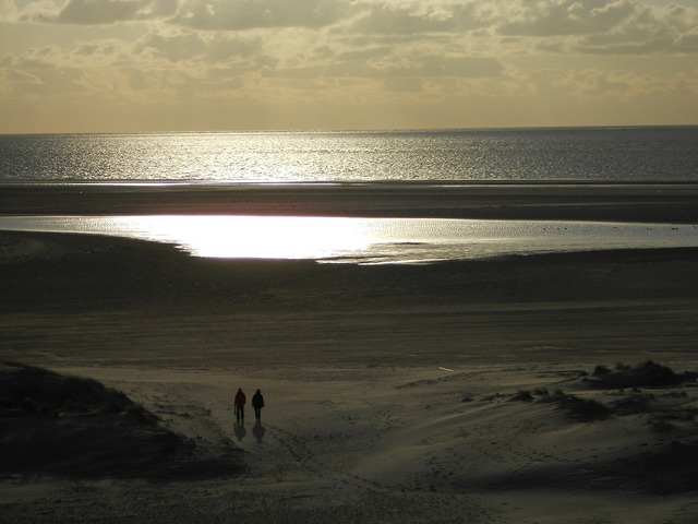 Beach island amrum, travel vacation.