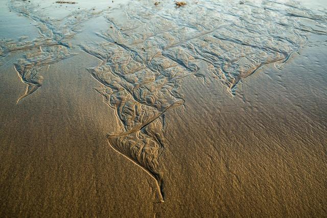 Beach long reef sydney, travel vacation.