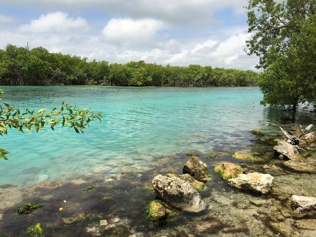 Beach mar cancun, travel vacation.