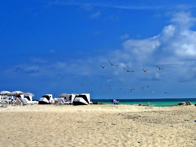 Beach miami sea, travel vacation.