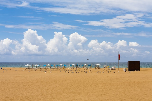 Beach portugal algarve, travel vacation.