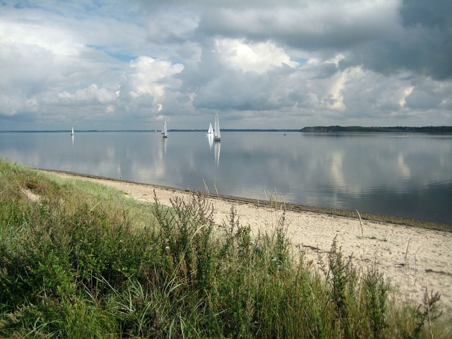 Beach sailing ships denmark, travel vacation.