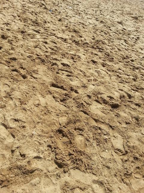 Beach sand summer, travel vacation.