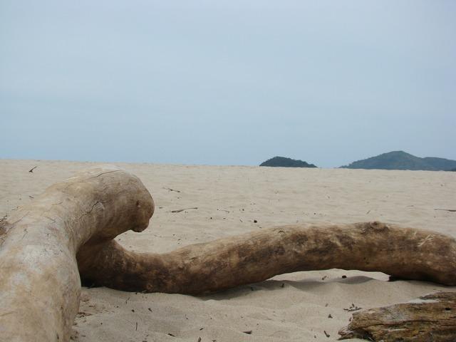 Beach sand trunk, travel vacation.