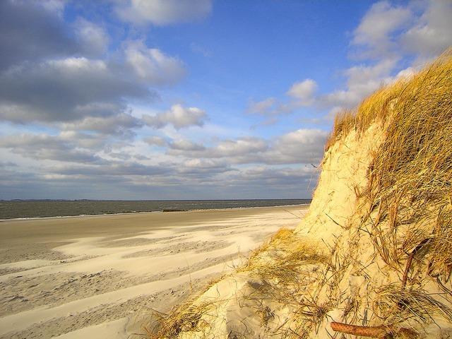 Beach sea north sea, travel vacation.