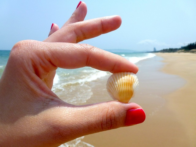 Beach seashell toenail, travel vacation.