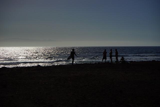 Beach surfer sea, travel vacation.
