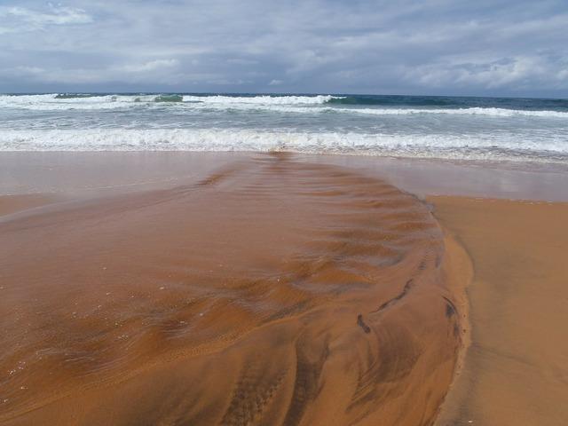 Beach sydney beach australia, travel vacation.