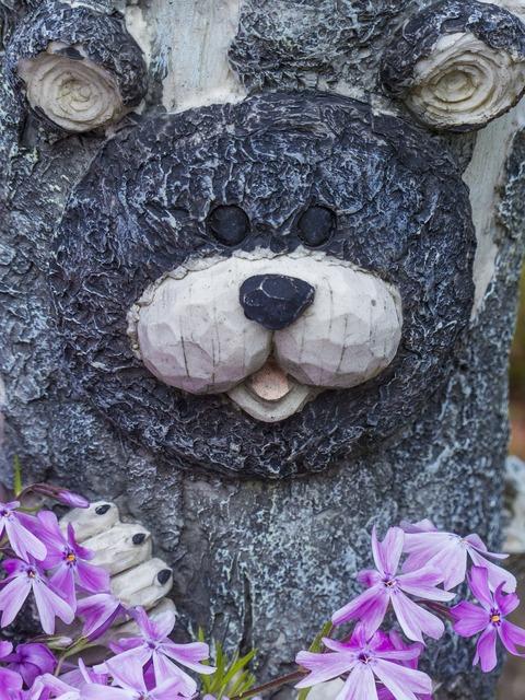 Bear face garden, nature landscapes.